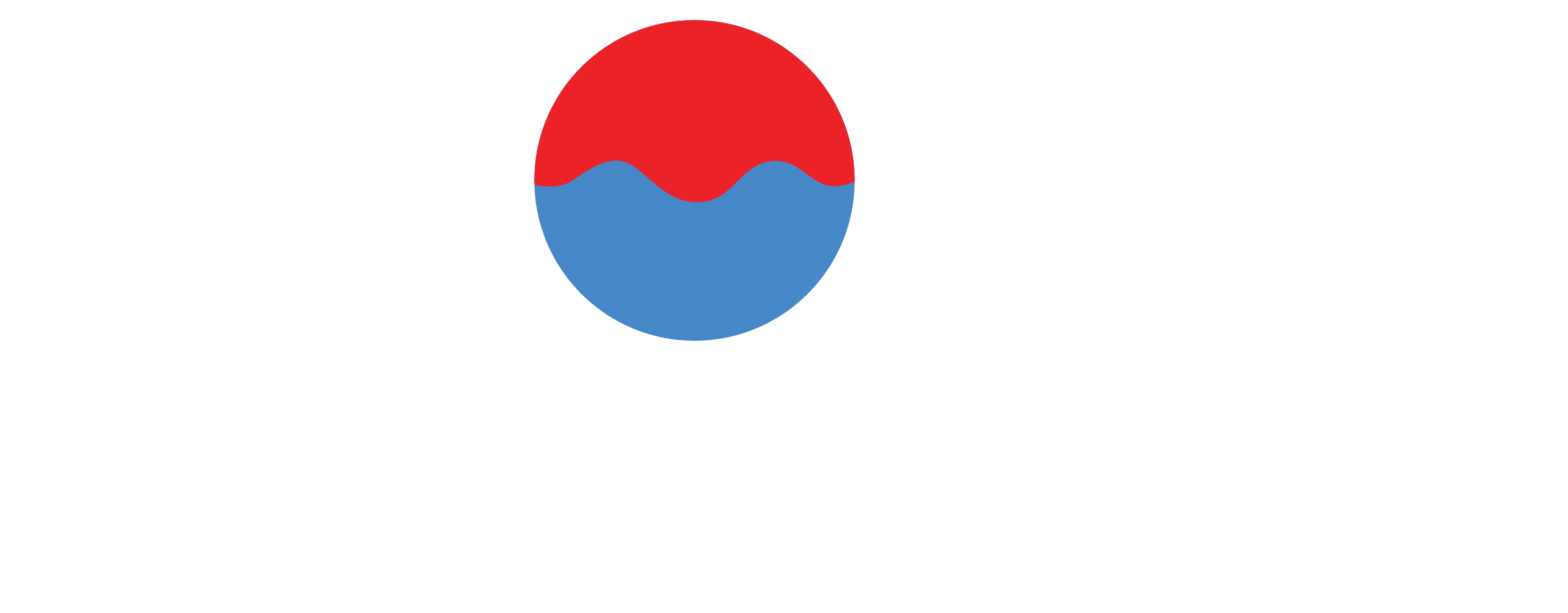 Chowdy Foundation Logo in White